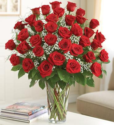 Ultimate Elegance Red Roses