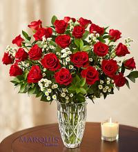 Marquis Red Roses