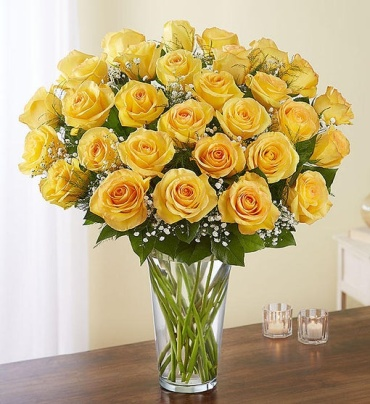 Ultimate Elegance Yellow Roses