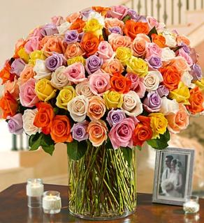 100 Premium Stem Multicolored Roses
