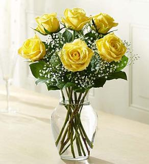 Love\'s Embrace™ Roses – Yellow