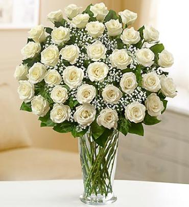 Ultimate Elegance White Roses