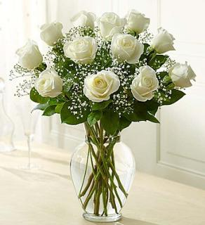 Rose Elegance - White Roses