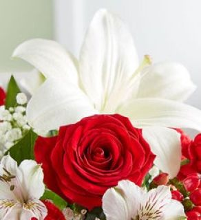 Florist Choice Bouquet Red and White