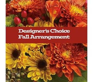 Fall Designers Choice