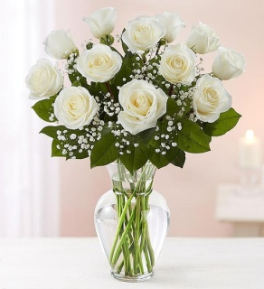 Rose Elegance White Roses