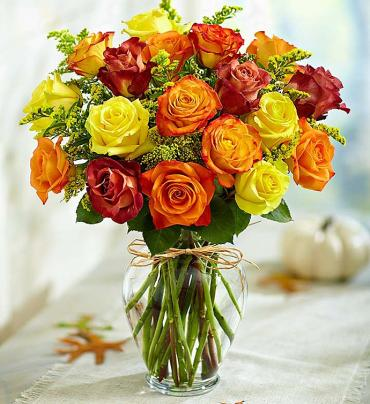 Rose Elegance - Autumn Roses
