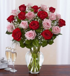 Ultimate Elegance Pink and Red Roses