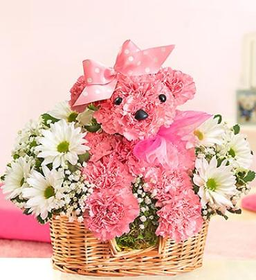 "Princess Pawsâ""¢"